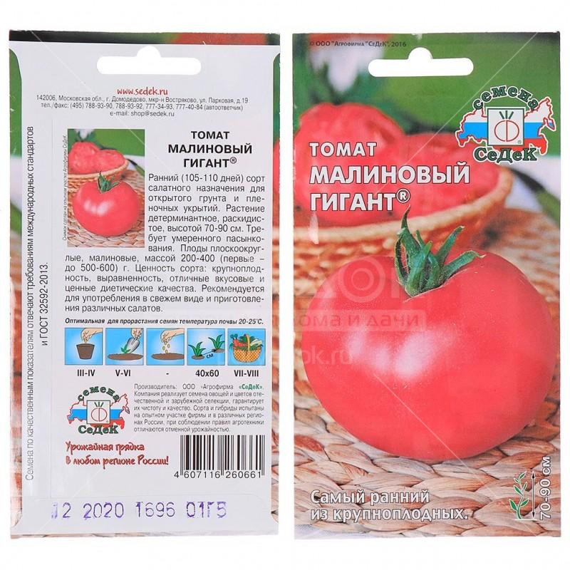 томат малиновый гигант отзывы фото итоге